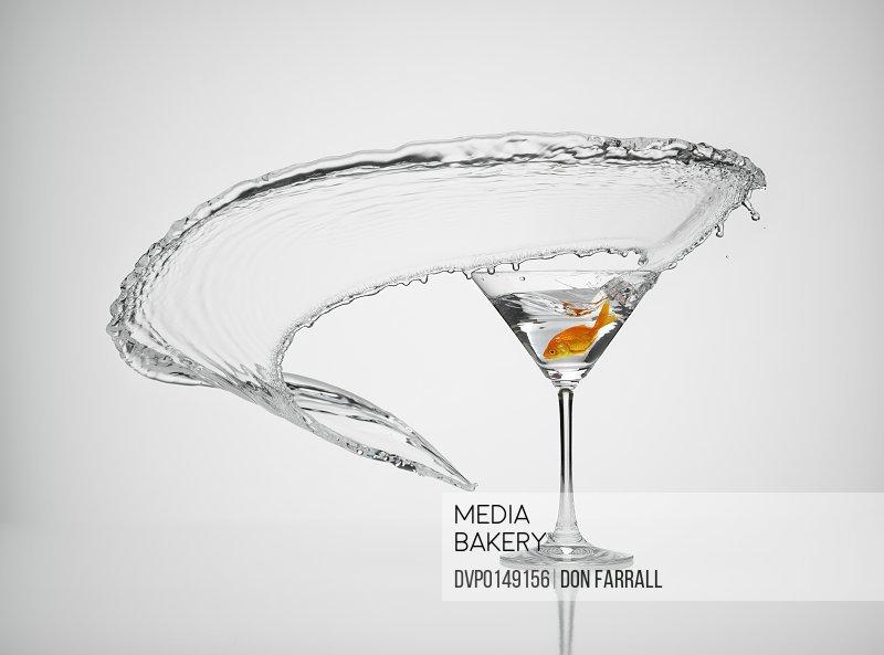 Goldfish splash martini