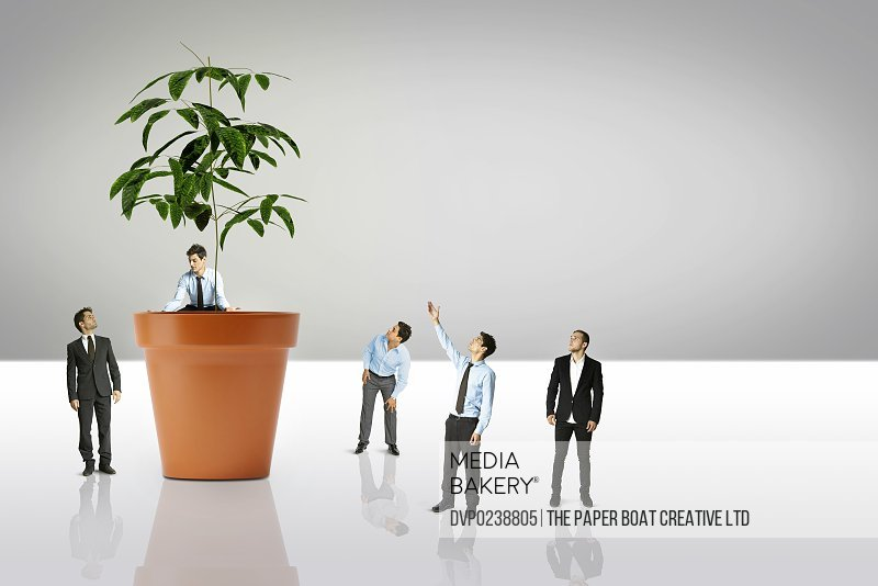 group of businessmen growing a giant plant in pot