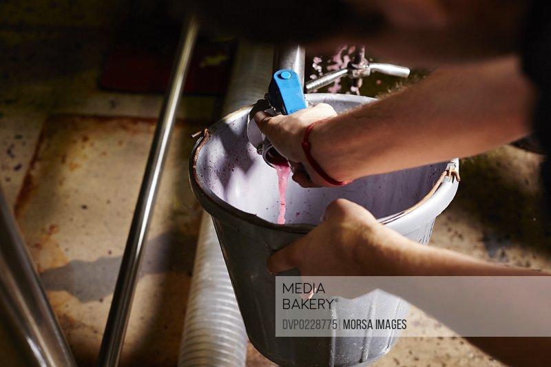 Male worker taking wine samples