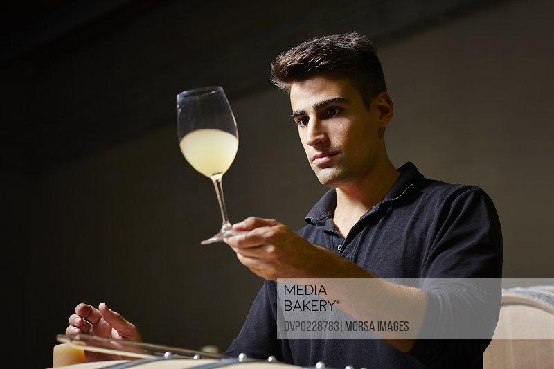 Wine expert checking color of a sample