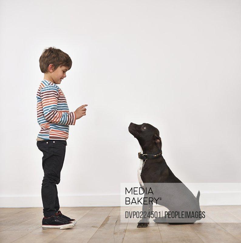 A cute little boy training his dog