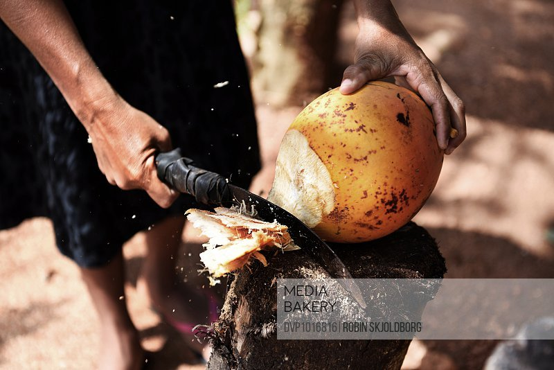 Close up of hand with machete chopping coconut