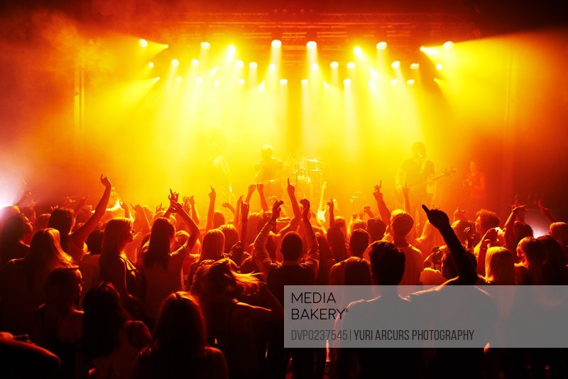 Rear-view of a cheering crowd at a music concert- This concert was created for the sole purpose of this photo shoot, featuring 300 models and 3 live bands. All people in this shoot are model released