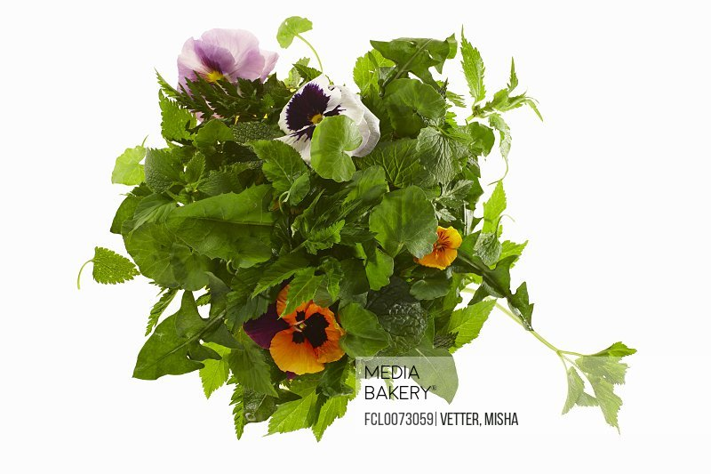 Ingredients for wild herb salad/n
