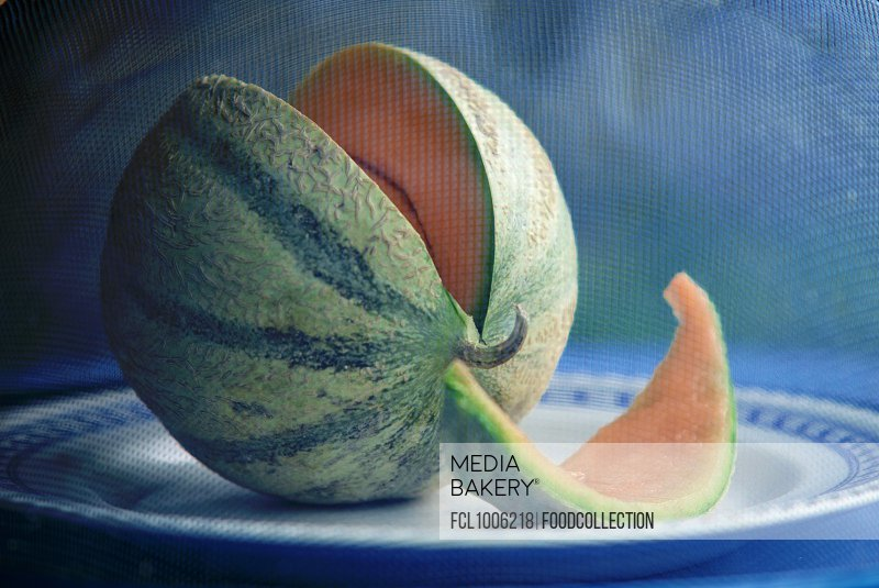 A melon under a fly cover
