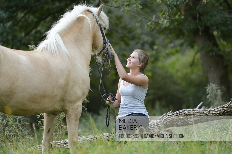 Girl caressing horse