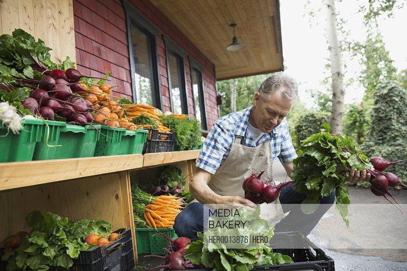 Worker unloading produce outside market