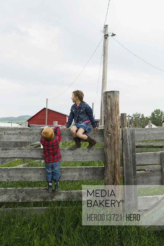 Brother and sister on fence in rural pasture
