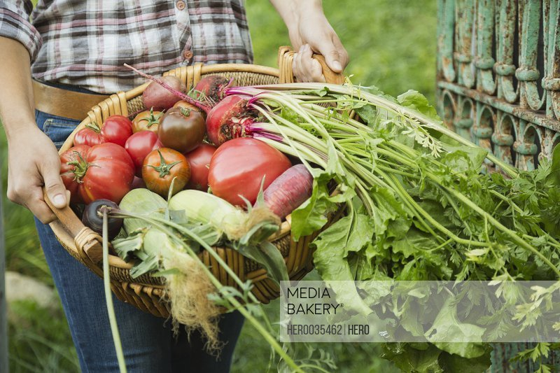 Woman carrying freshly harvested vegetables in basket