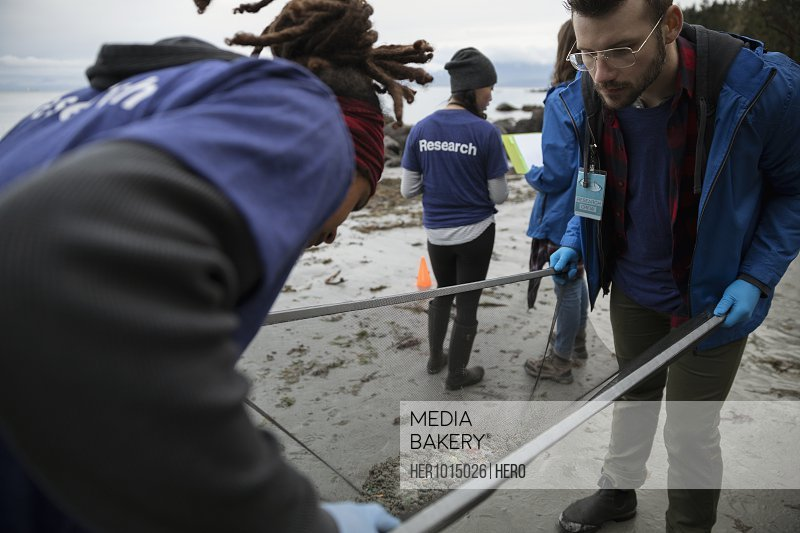 Eco-friendly scientists with screen examining micro plastics on beach