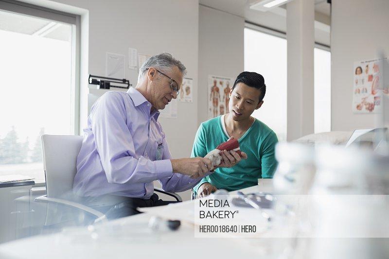 Doctor showing patient bone model in clinic