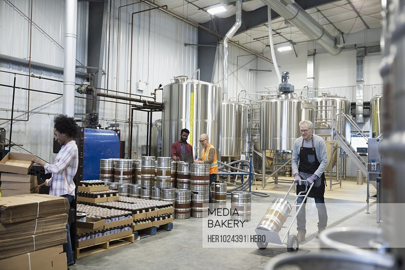 Brewers working in brewhouse distillery warehouse