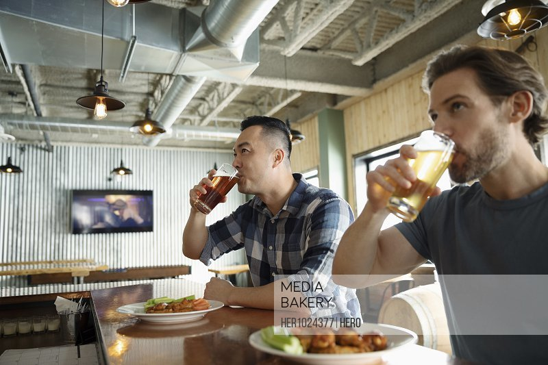 Male friends drinking beer and eating lunch in brewhouse