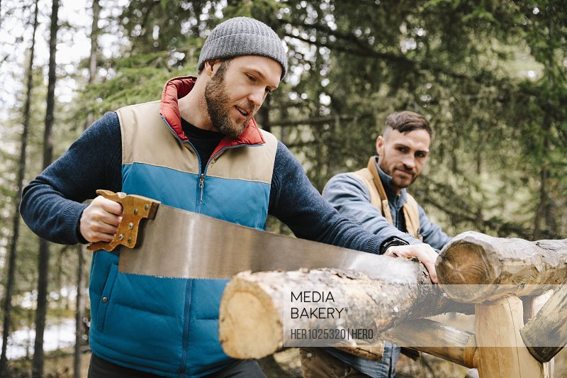 Men with saw cutting firewood