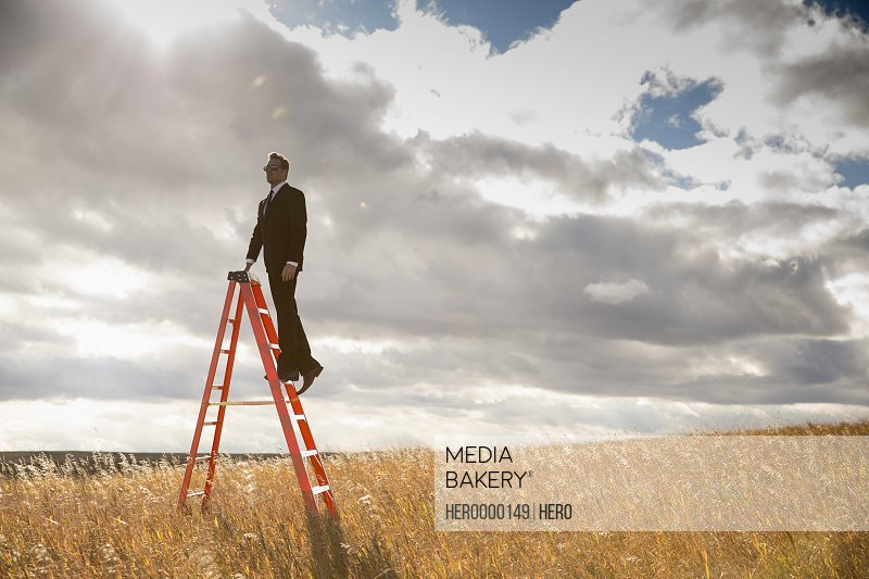 Businessman standing on step ladder in field