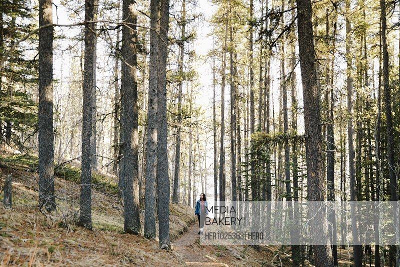 Woman hiking in woods