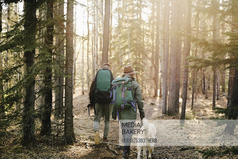 Couple with dog hiking in woods