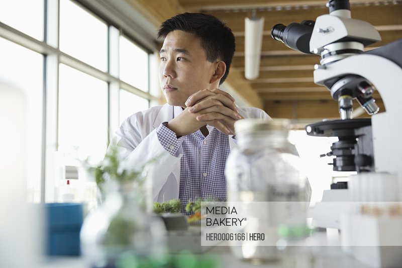 Thoughtful botanist sitting in laboratory