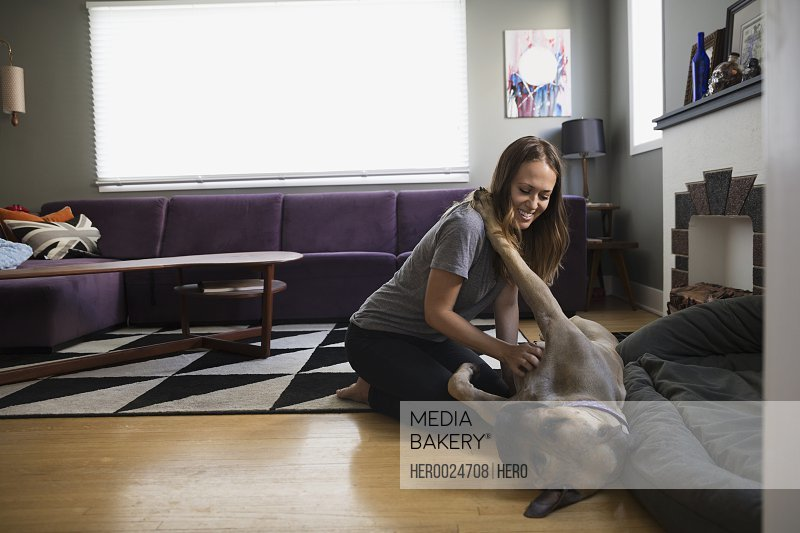 Woman scratching dog's belly on living room floor
