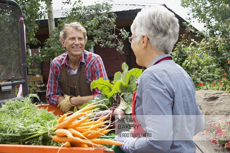 Farmers talking in vegetable garden