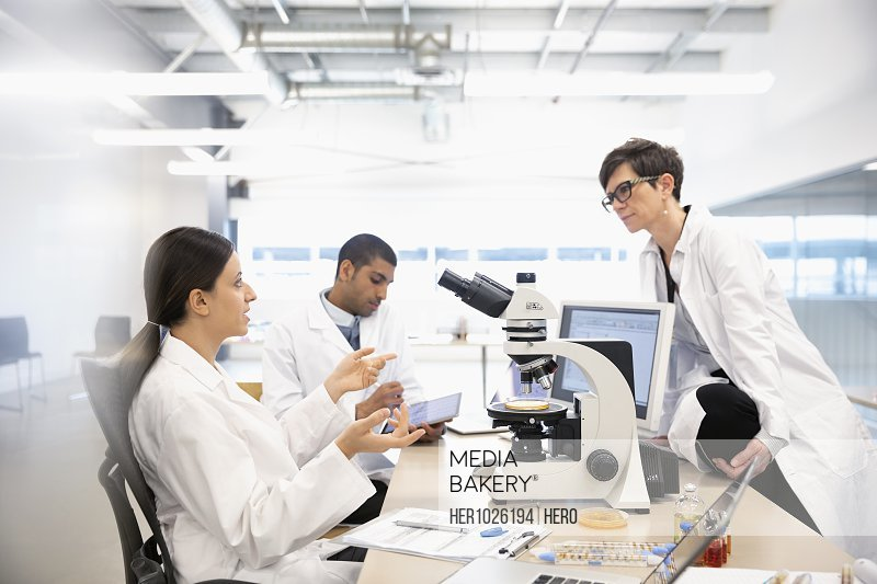 Scientists working at microscope in laboratory