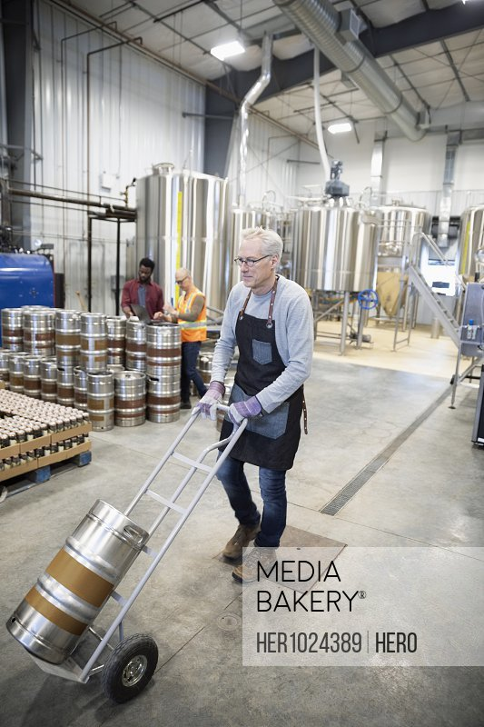 Brewer moving keg of beer with hand truck in distillery
