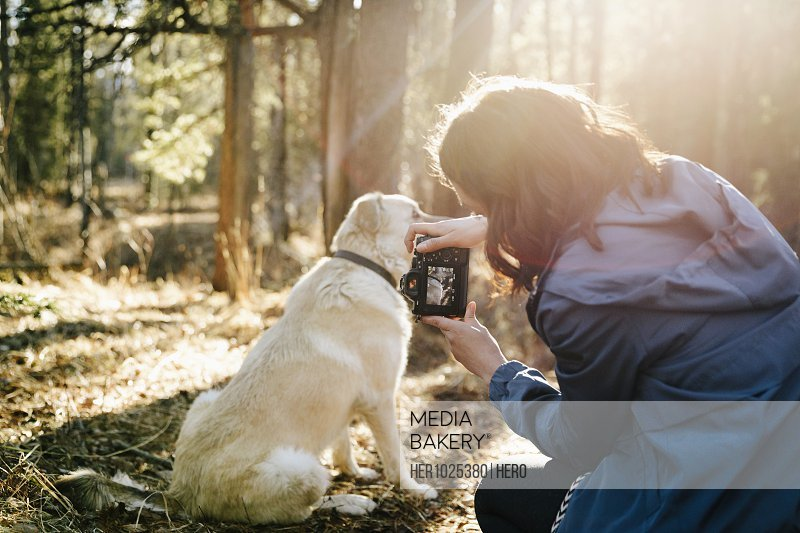 Woman with digital camera photographing dog, hiking in sunny woods