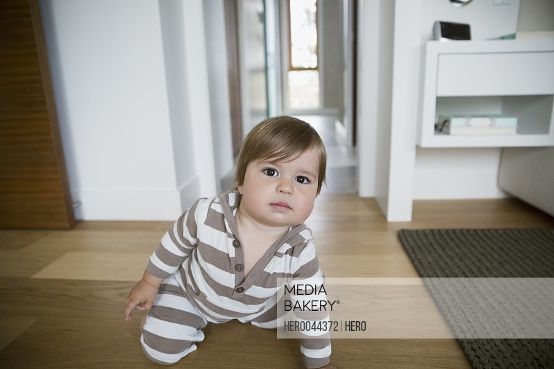 Portrait serious baby crawling on hardwood floor