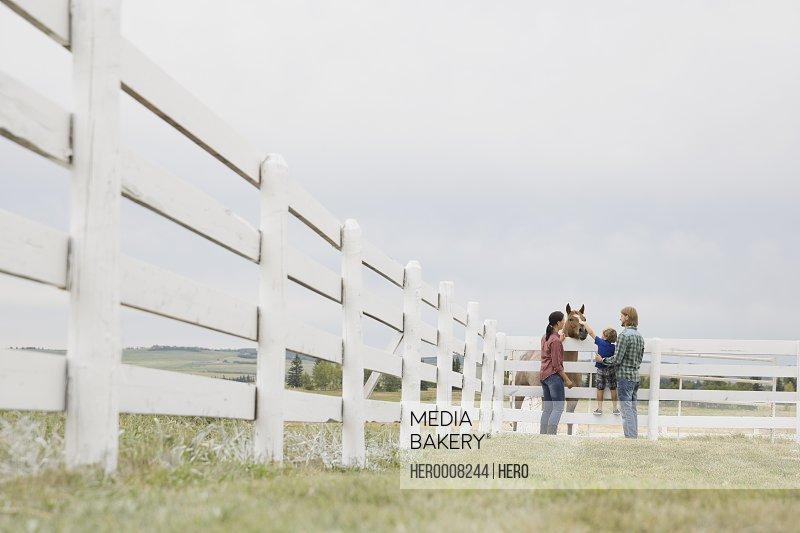 Family of three feeding horse on ranch