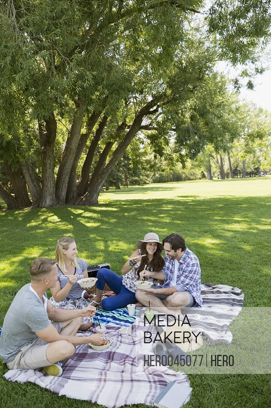 Couples eating on picnic blanket in grass in summer park