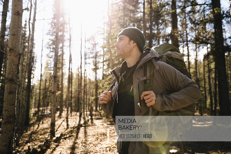 Serene man with backpack hiking ins sunny woods
