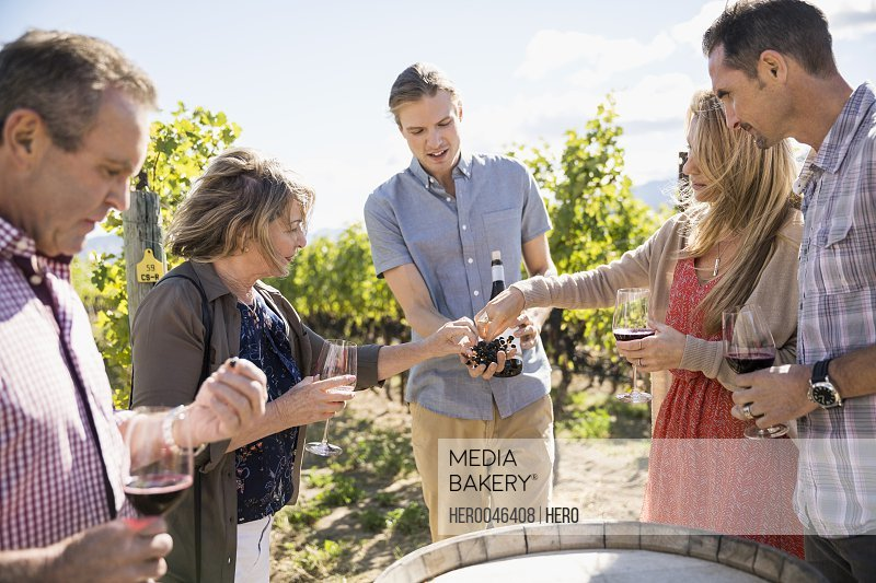 Vintner showing grapes to couples wine tasting in sunny vineyard
