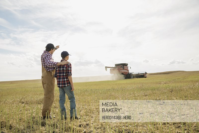 Father and son watching combine harvester in field