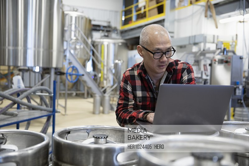 Male brewer using laptop in brewhouse distillery
