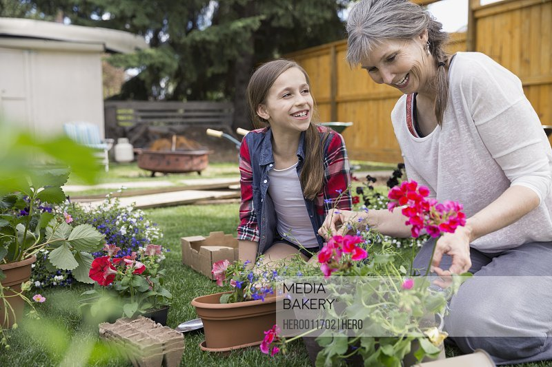 Grandmother and granddaughter planting flowers in garden
