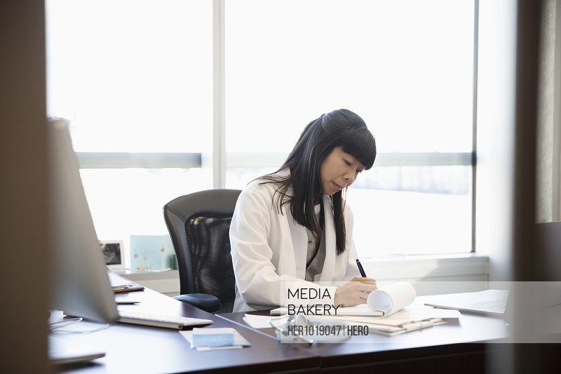 Female doctor working in office