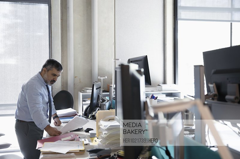 Dedicated businessman working at desk in open plan office
