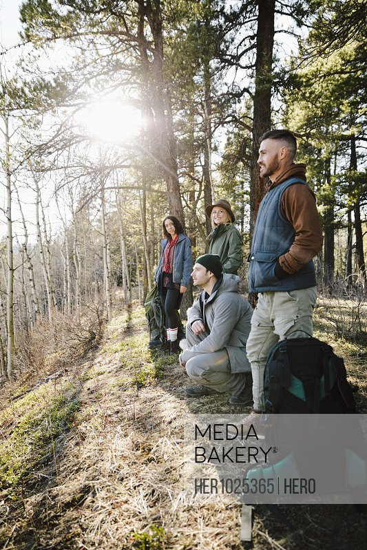 Friends hiking in sunny woods