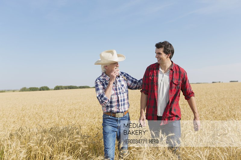 Father and adult son talking in wheat field.