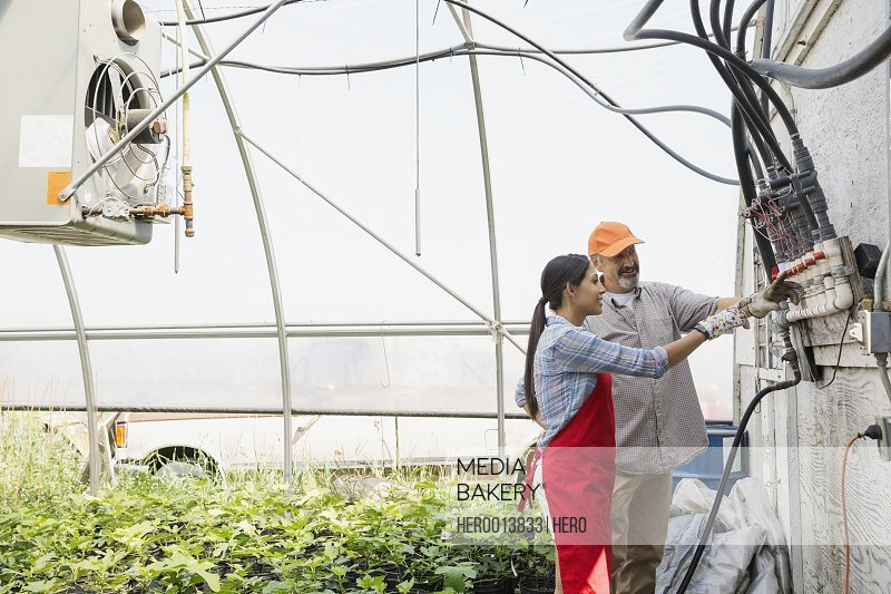 Workers checking equipment in greenhouse