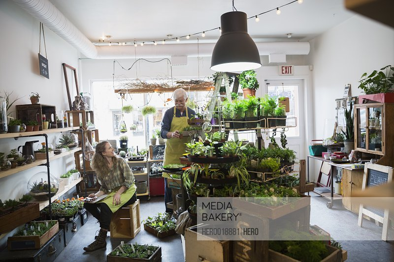 Terrarium shop owners working