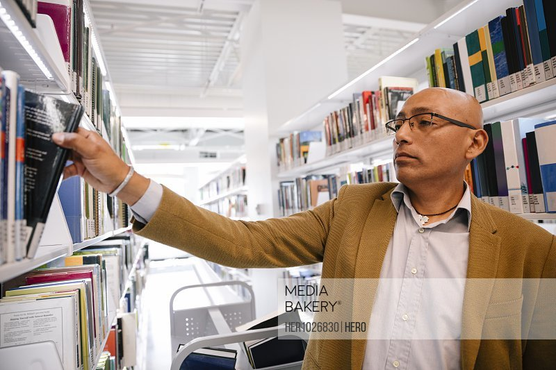 Librarian placing book on shelf in univerity library