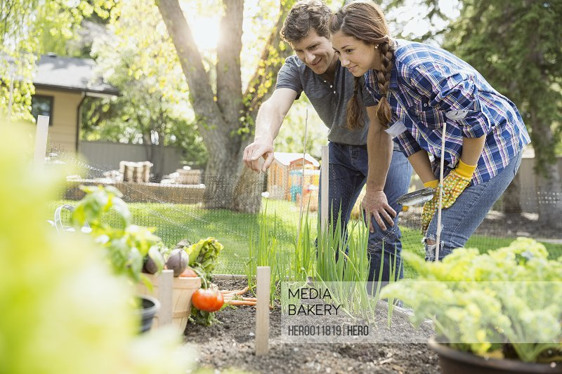 Couple pointing in vegetable garden