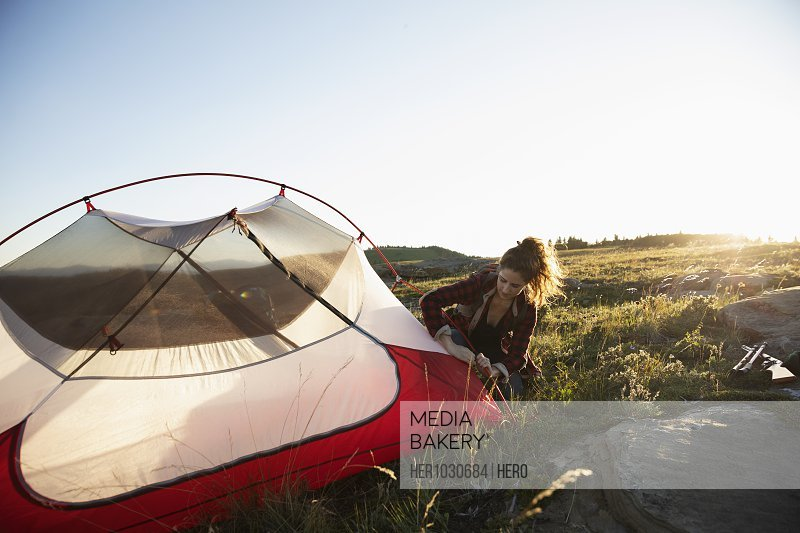 Young woman pitching tent on grass in sunlight