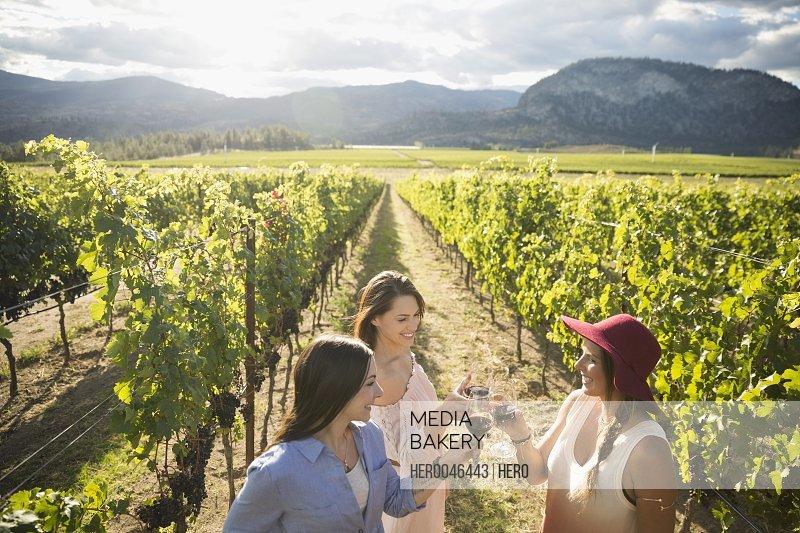 Women friends wine tasting toasting wine glasses in sunny vineyard