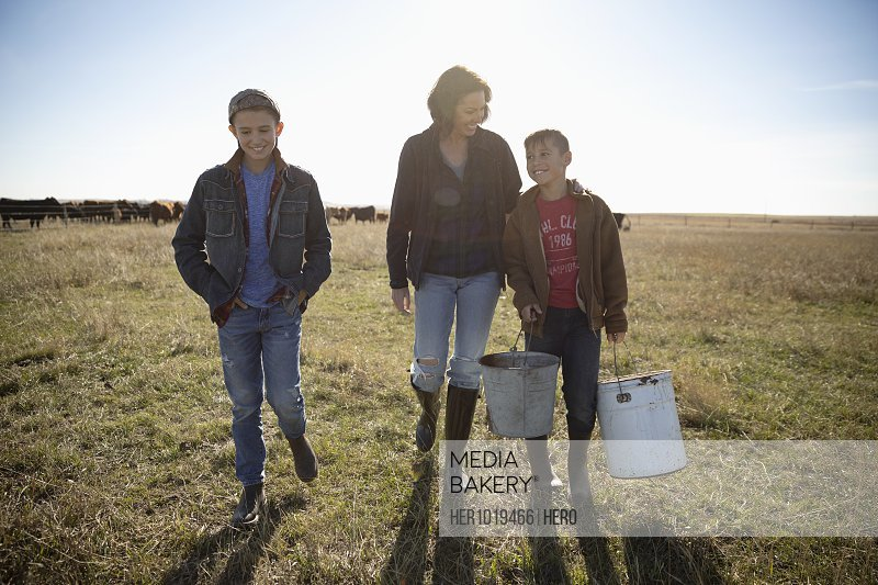 Female rancher and sons working in sunny field