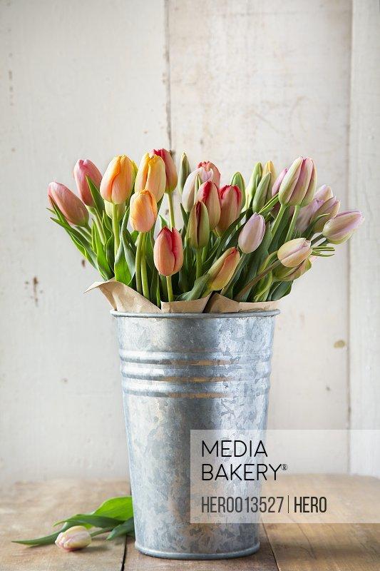 Multicolor tulips in galvanized vase