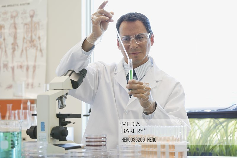 Male scientist analyzing chemical solutions