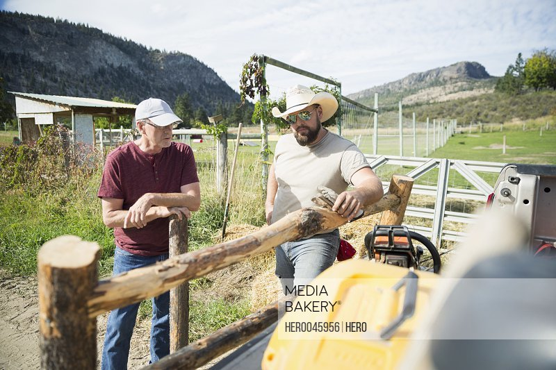 Male farmers with wooden fence on sunny farm
