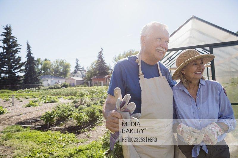 Smiling senior couple with gardening gloves sunny garden